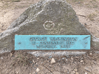 George WashingtonBi-centennial 1932 Memorial Tree
